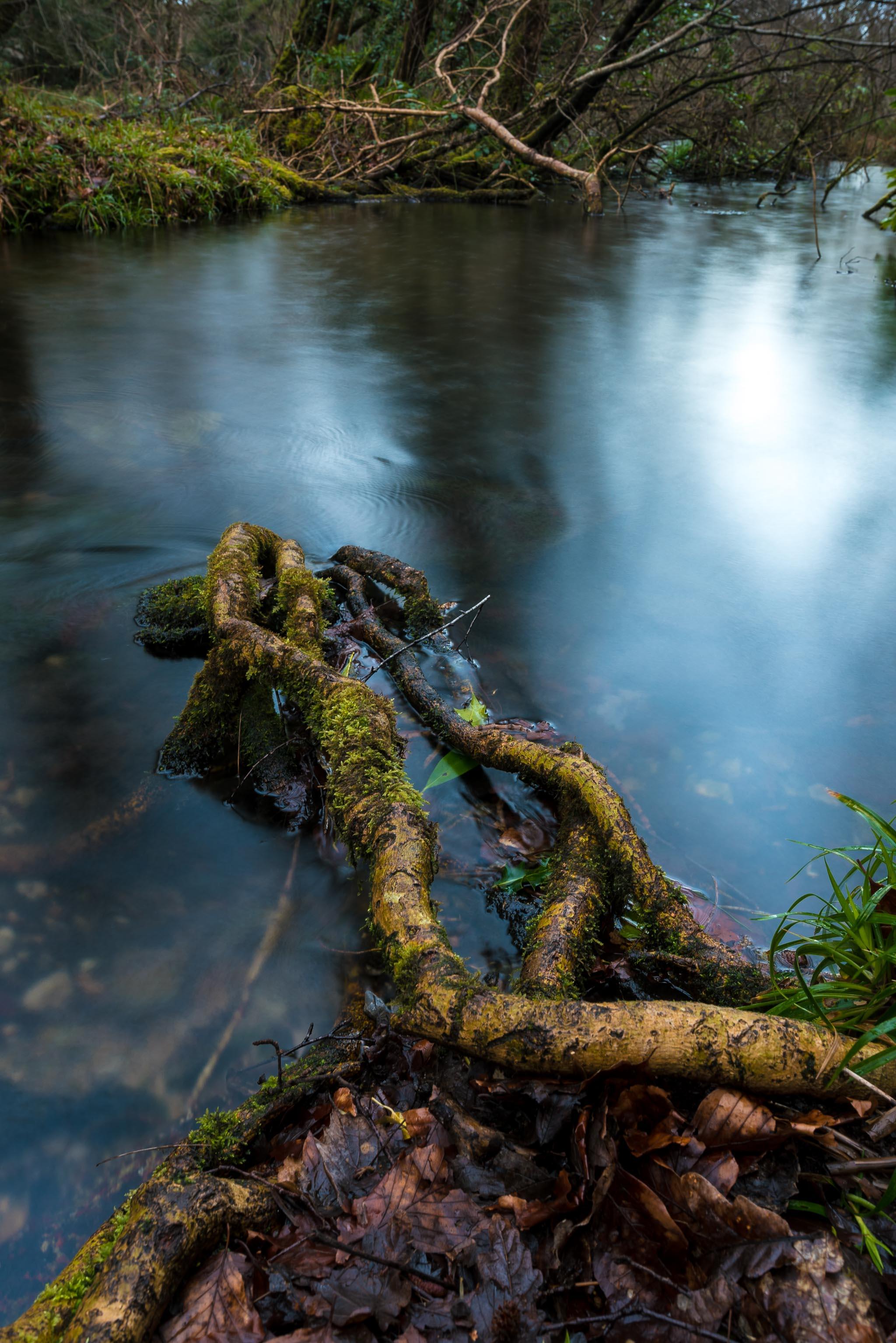 Bluepools Killarney National park Photography